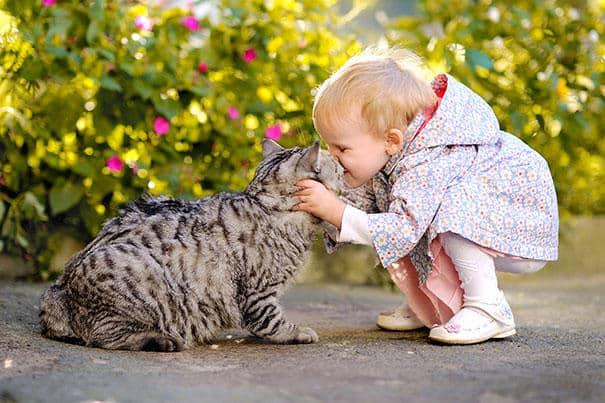 Chats et enfants.
